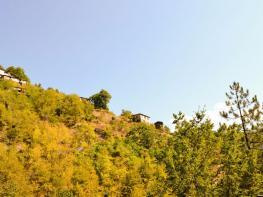 rila i krastova gora (435 of 435).jpg