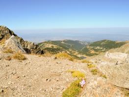 rila i krastova gora (157 of 435).jpg