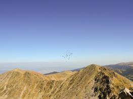 rila i krastova gora (175 of 435).jpg