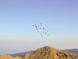 rila i krastova gora (176 of 435).jpg
