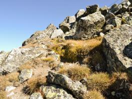 rila i krastova gora (209 of 435).jpg
