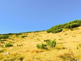 rila i krastova gora (27 of 435).jpg