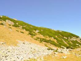 rila i krastova gora (61 of 435).jpg