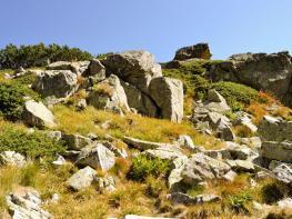rila i krastova gora (65 of 435).jpg